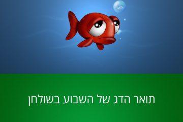 יא דג